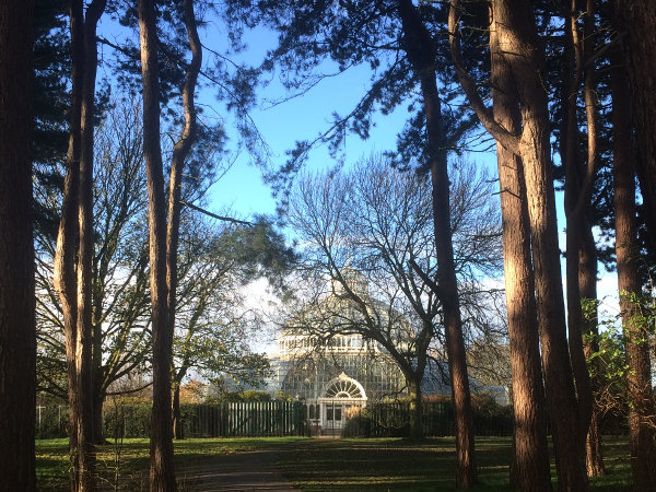 A glass palm house visible through trees